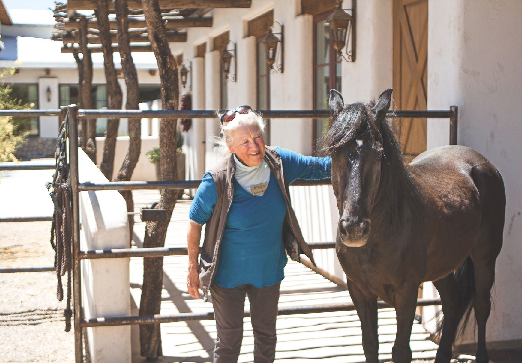 Senior Living Therapy with horse